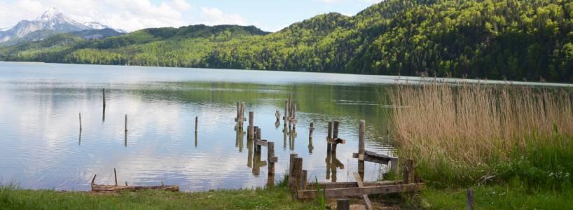 Von Weißensee zu den Burgruinen Eisenberg und Hohenfreyberg