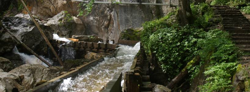 Wasserläufer-Route: Zwischen Lindenberg im Westallgäu und Halblech im Ostallgäu
