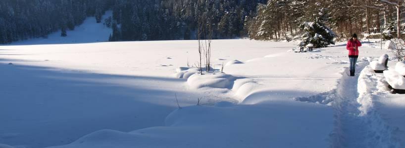 Der Winter von seiner reizvollen Seite: Winterwanderung zur Saloberalm