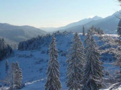 Winterwanderung zum Buchenberg