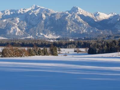 Schlittenfahren rund um Weißensee