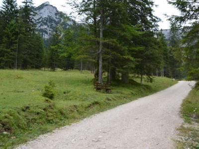 Wandertour zu den Burgruinen Falkenstein und Vilsegg