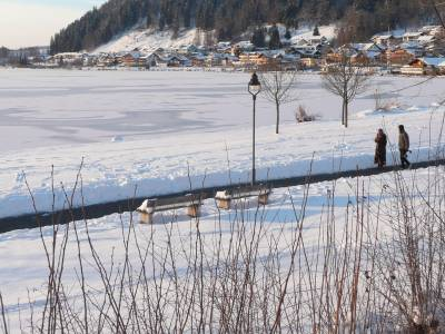 Eine gemütliche Winterwanderung um den Hopfensee