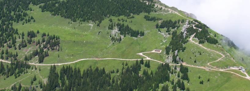 Vom Tegelberg zur Alpe Jägerhütte