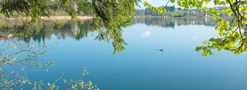 Die ca. 3,3 Kilometer lange Wanderung rund um Füssen-Weißensee
